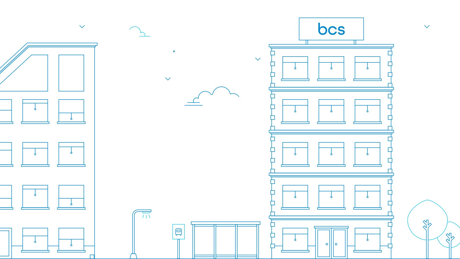 BCS Case beeld 2