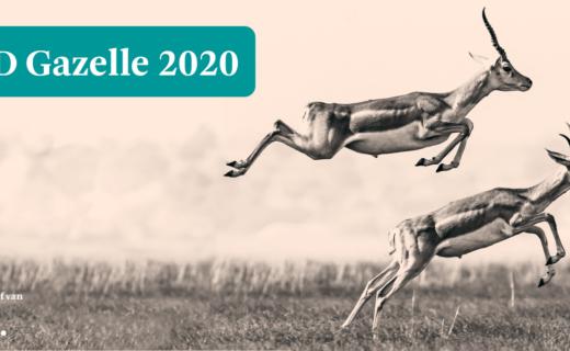 Get Hooked wint FD Gazelle Award 2020!